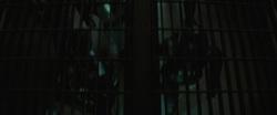 Suicide Squad (2016) Images